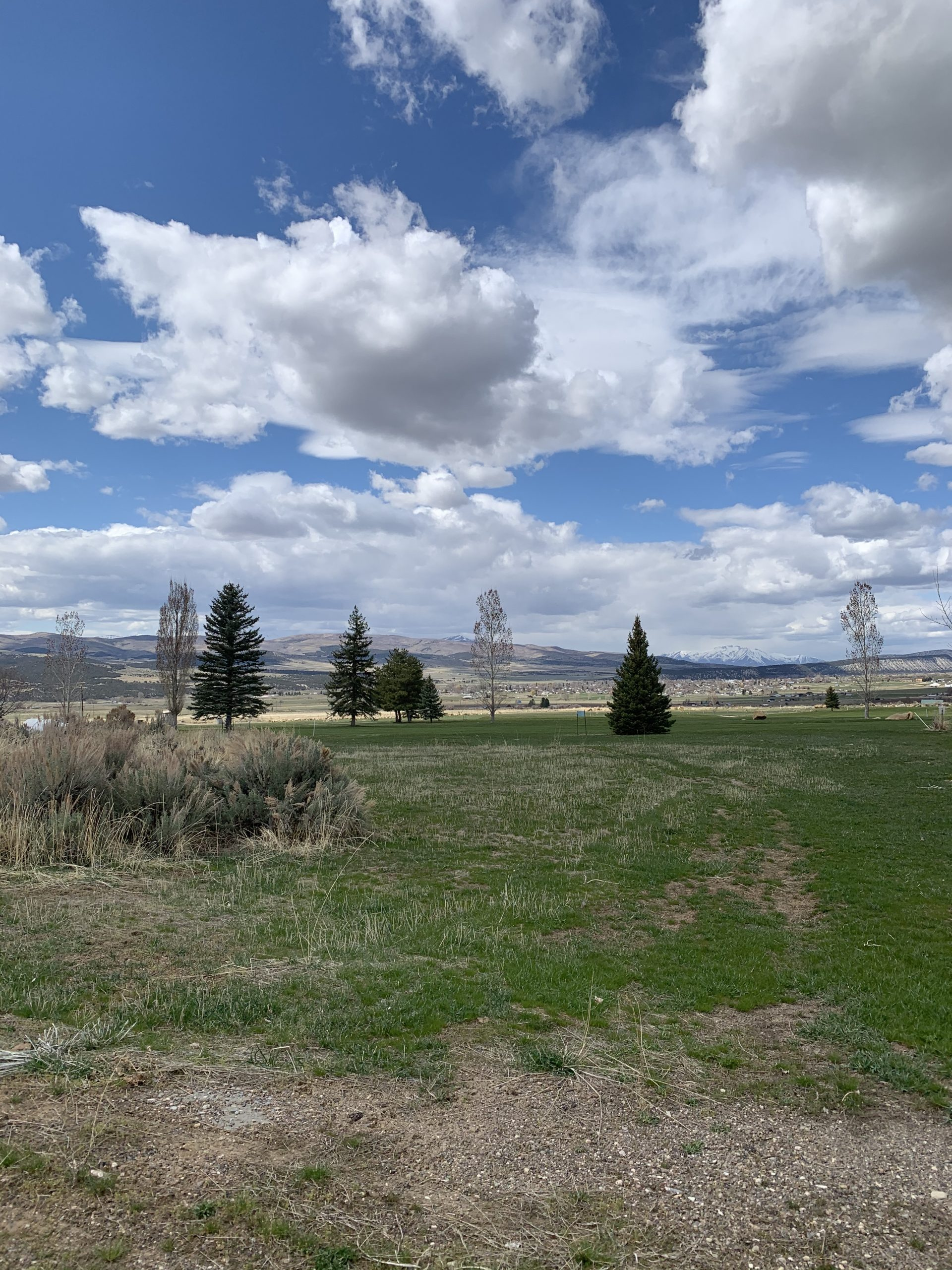 Golfers! 1/2 acre lot on the first Fairway, SMR, Fairview, Ut