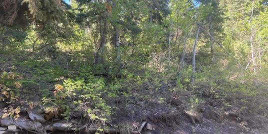 Beautiful 1.24 acre lot with Pines in the Skyline Mtn gated Resort! Lot J-135